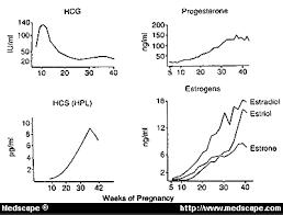Gestational Diabetes In Primary Care