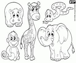 Small Picture African wild animals coloring pages printable games