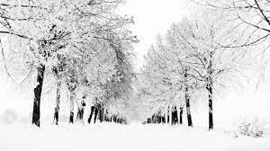 Winter wallpaper desktop ...