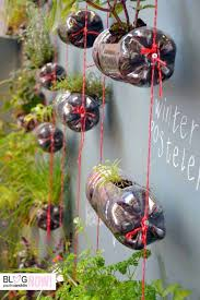 Not that we are advocating drinking soda but.Turn empty pop bottles into  mini-planters. You can fill them with herbs!