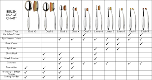 oval makeup brushes uses. artis brush usage chart oval makeup brushes uses c