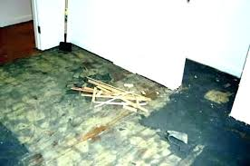 how to remove carpet glued to concrete floor how to remove glue from concrete floor how