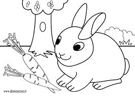 Donna E Casa Con Bagno Da Colorare Per Bambini E Disegno Coniglietto