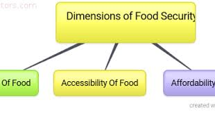 food security essay essay about food essay food nutrition and health essay essay on fast food and our health