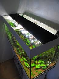 Perfect Beleuchtung Aquarium Zeit