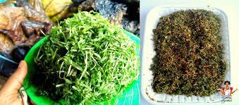 Health Benefits of Gnetum Africanum (Ukazi or Afang) Leaves