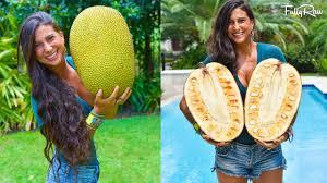 Image result for jackfruit, images