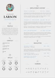 Cv Format It Professional Meltemplates