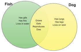 differences and similarities between a fish and dog venn diagram differences and similarities between a fish and dog venn diagram creately