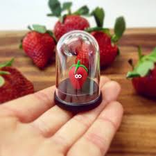 the pet strawberry vegan gifts gifts for vegetarians funny gifts mothers