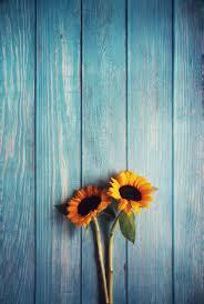 Sunflower Wallpaper - EnWallpaper