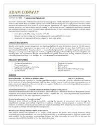 Professional Strengths Resume Executive Resume Template Market Your Strengths