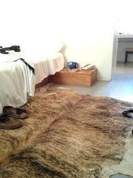 brindle cowhide rug hotel where can i get one of these brindle cowhide rugs gray brindle