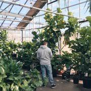 garden centers in ma. Plain Garden Photo Of Mahoneyu0027s Garden Centers  Winchester MA United States For In Ma O