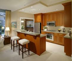 Island For Small Kitchen Small Kitchen Ideas With Island Designer Kitchen Islands