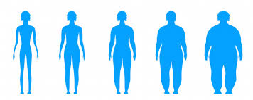 Body Scale Chart Bmi Body Mass Index Infographic Chart Scale Vector