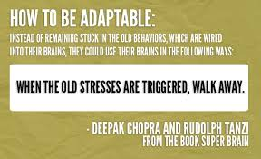 Holiday Season Quotes Classy 48 Quotes From Deepak To Help You DeStress During The Busy Holiday