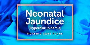 Nursing Care Plan For A Baby With Birth Asphyxia 4 Hyperbilirubinemia Neonatal Jaundice Nursing Care Plans