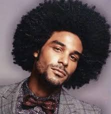 Image result for afro hair