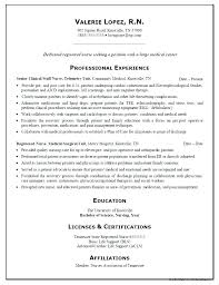 Professional Nursing Resume Template Stunning Office Nurse Resume Cardiology Nurse Resume Registered Nurse Resume