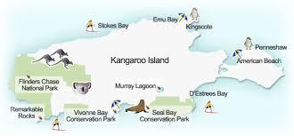 things to see and do on kangaroo island