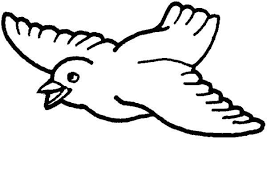 Small Picture Printable Bird Coloring Pages Coloring Me