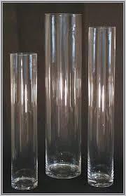 cylinder vases bulk 30 popular tall glass vase ideas 2018