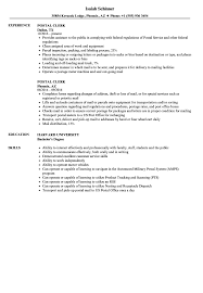 Postal Clerk Resume Sample Postal Clerk Resume Samples Velvet Jobs 5
