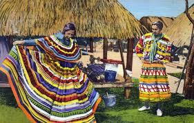 Resultado de imagen de seminole