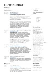 Account Director Resume samples