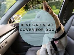 the best car seat cover for dog