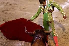 bull fighting injuries. Unique Fighting On Bull Fighting Injuries