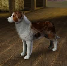 Red merle coat by aussi99 - The Exchange - Community - The Sims 3