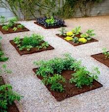 Small Picture desert landscaping ideas Arizona desert landscape design with