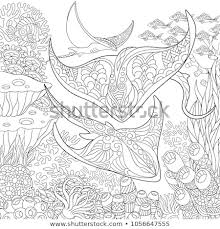 Coloring Page Adult Coloring Book Idea Stock Vector Royalty Free