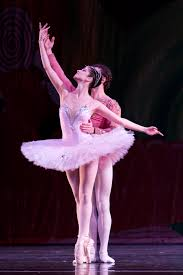 8 Tchaikovsky Dance of the Sugar Plum Fairy Amy Turk Harp.