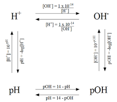 Calculations Of Ph Poh H And Oh