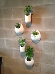 contemporary wall planters 16 best pots images on plants ceramic wall planters and