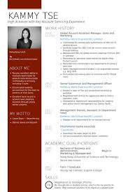 Account Assistant Resume samples - VisualCV resume samples database