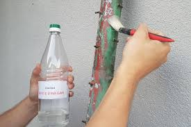 will vinegar remove paint from metal
