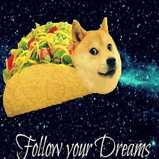 doge follow your dreams. Plain Dreams Taco Doge Dreams By Laura Webb Intended Follow Your G