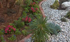 interior outdoor bushes and plants best evergreen in pots landscape shrubs large artificial pictures of outdoor