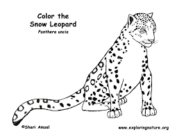 Unsurpassed Leopard Coloring Pages Baby Snow Free Printable For Kids