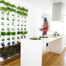 Minigarden wall planter - herbs growing right there in your kitchen - how  wonderful
