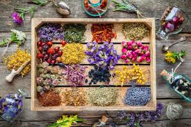 5 Must-Know <b>Herbs</b> for Healing and <b>Well</b>-<b>Being</b> - Goodnet