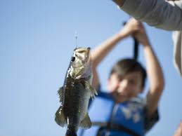 Florida Freshwater Fishing Regulations Chart Find Places To Fish And Boat Near You