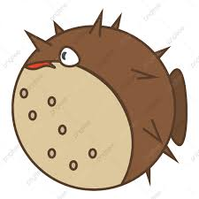 fat pufferfish vector or color