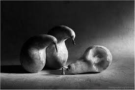 Famous Still Life Photographers 100 Examples Of Still Life Photography 100 Examples Of Still Life