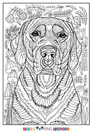 Small Picture Labrador Retriever Coloring Page Finja ZileArt