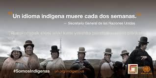 International Expert Group Meeting on Indigenous Languages   United ...